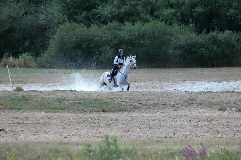 centre equestre jouy en josas